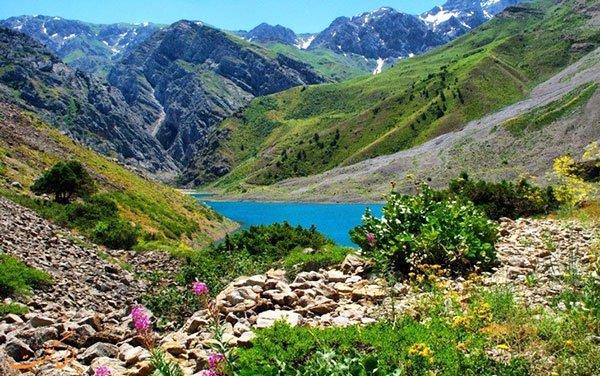 طبیعت ازبکستان